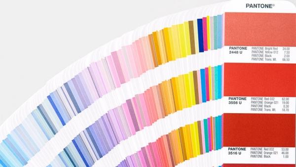 Выбираете ли вы одежду по цвету или выбор Pantone