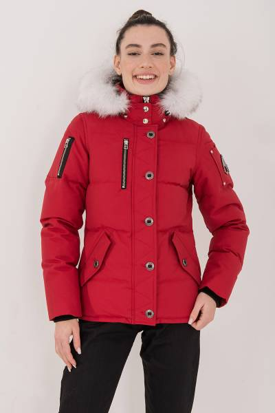 куртка Moose Knuckles из хлопка